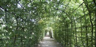 Przepis na piękny ogród