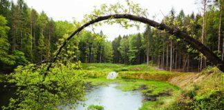 100 milionow zl dofinansowania na ochronę przyrody