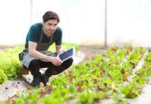 VAT dla rolników