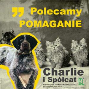 Polecamy POMAGANIE - Dobroczynne EkoKarty Kolekcjonerskie Charlie i Spółcat