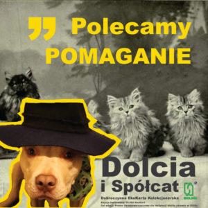 Polecamy POMAGANIE - Dobroczynne EkoKarty Kolekcjonerskie Dolcia i Spółcat