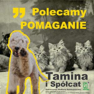 Polecamy POMAGANIE - Dobroczynne EkoKarty Kolekcjonerskie Tamina i Spółcat